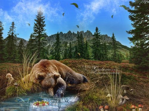 bear by vanesagarkova