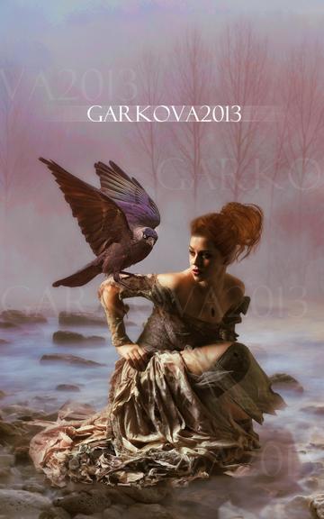 Crow by vanesagarkova