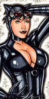 Catwoman Stretchagrafix card
