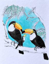 Tucanos by deboraborba