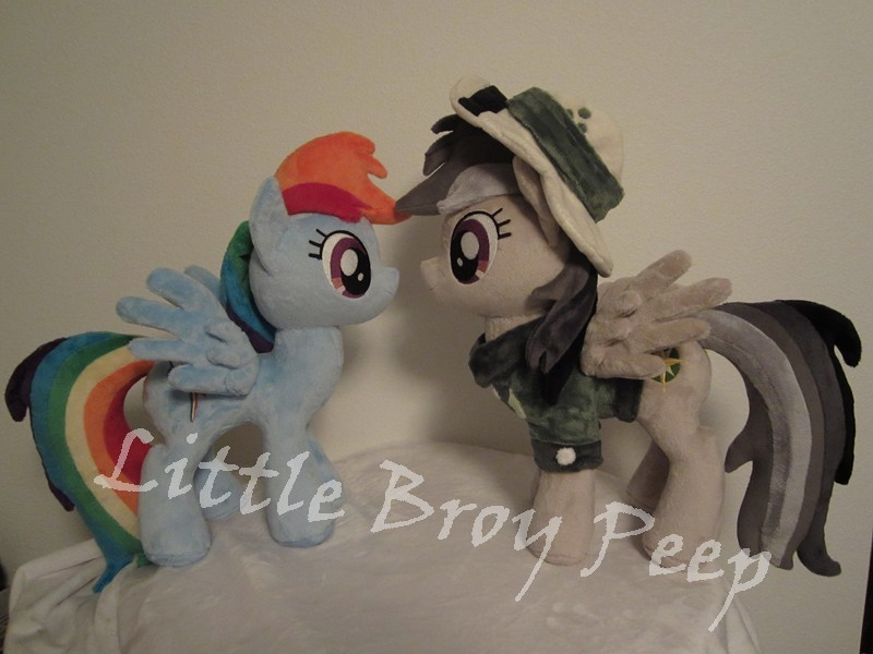 mlp Daring do and rainbow dash plush  (commission) by Little-Broy-Peep