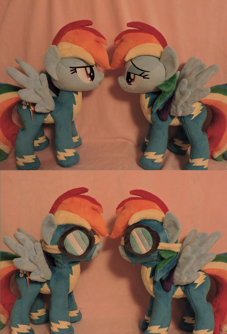 Double Rainbow Dash Plushies! by Little-Broy-Peep