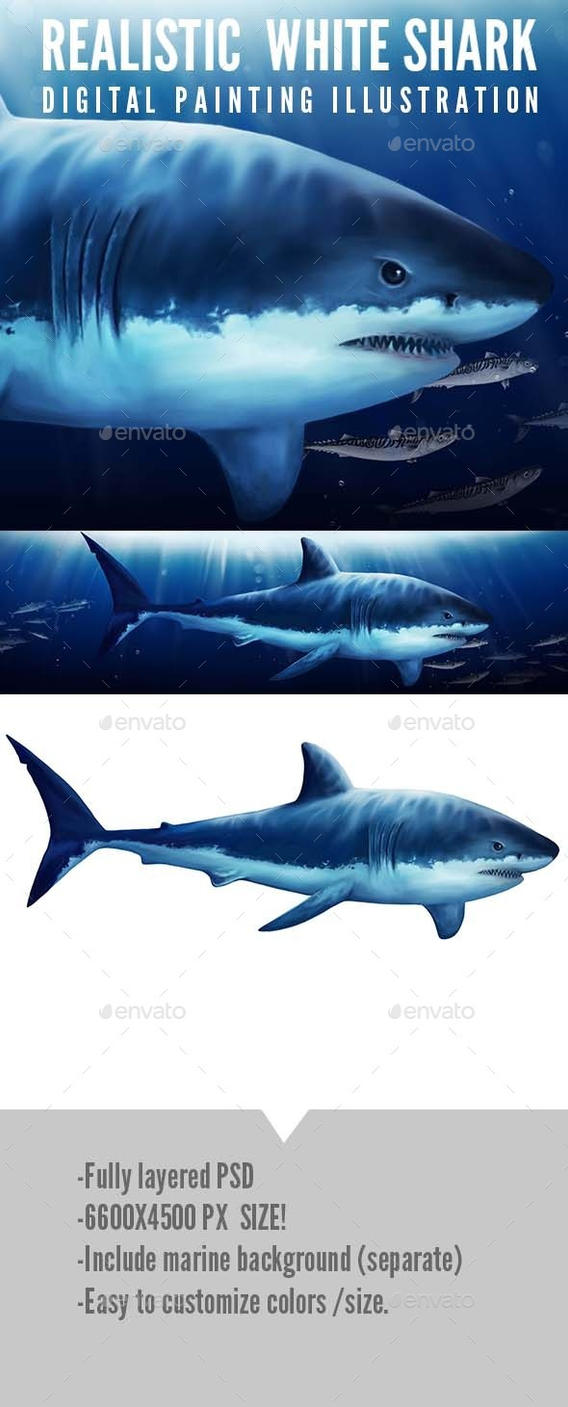 SHARK! stock digital painting by greatdiane