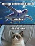 I Has Turtle