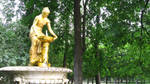 Summer at Peterhof