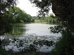 Tolstoy's Big Pond
