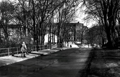 stockholm: nordic walking
