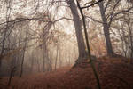 Autumn Fantasy : Mist and Mystery