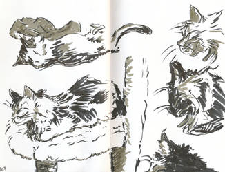 Brush Pen Sketches by Cherry-17