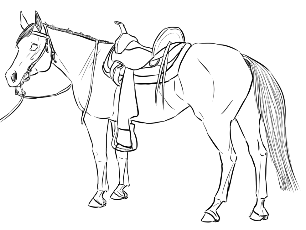 Line Art Horse : Western horse lineart by citruscoffins on deviantart