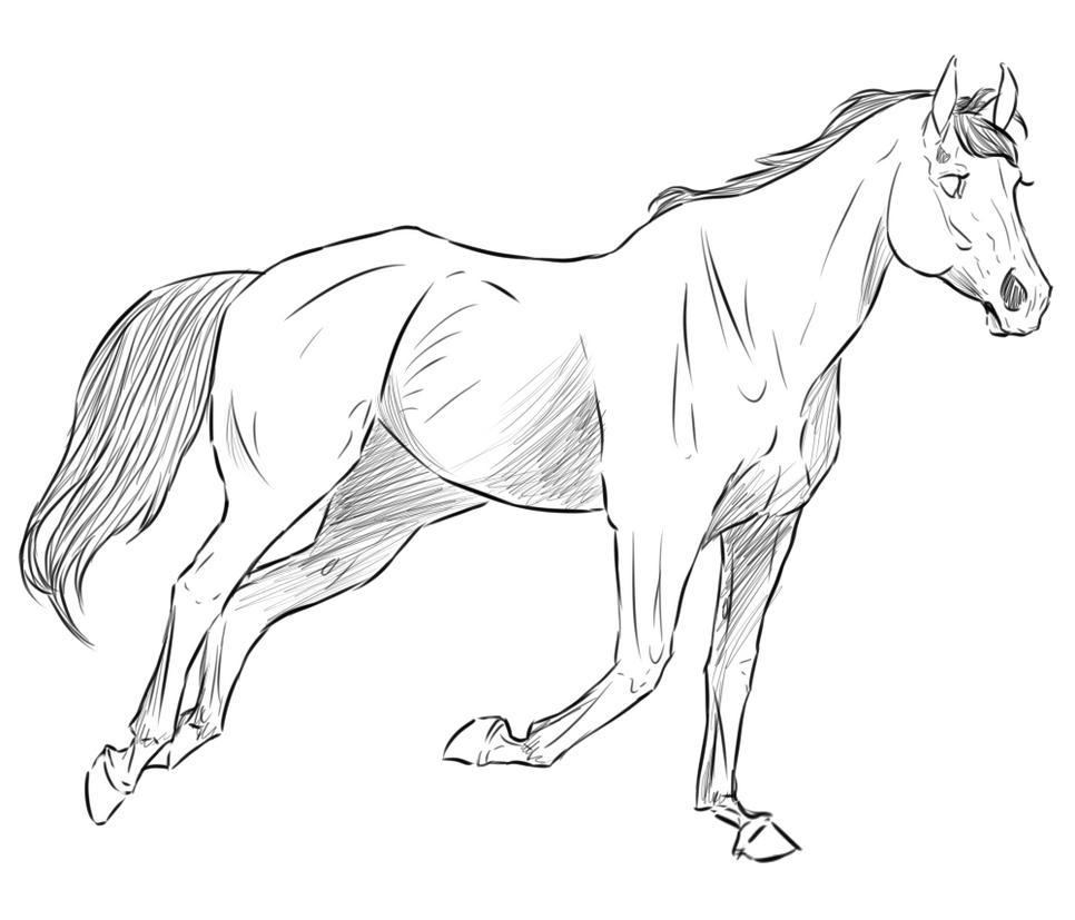 The gallery for quarter horse sketches for Quarter horse coloring pages