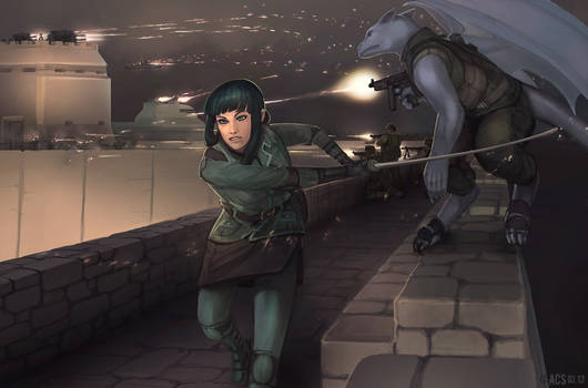 Commission - Fortress Assault