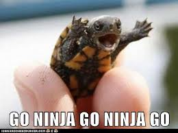 Go Ninja Go Ninja Go!!! by ZaneJulian