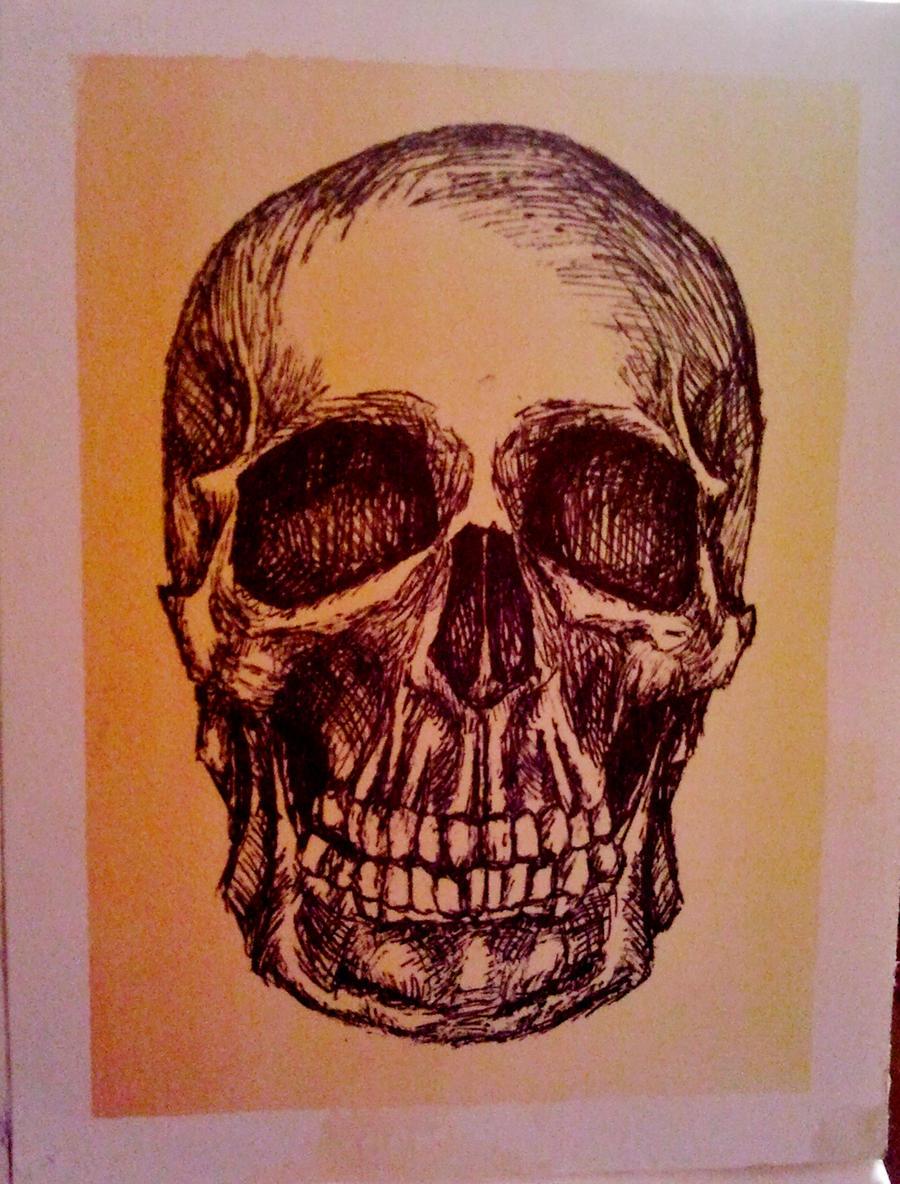 Ink Skull on watercolor by xitsveronikiox