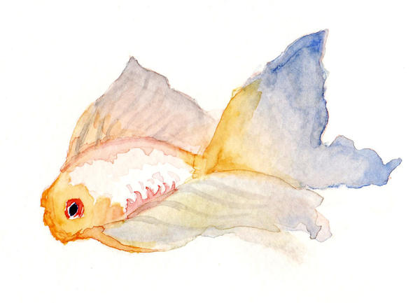 Watercolor fish by caitiekabob on deviantart for Watercolor fish painting