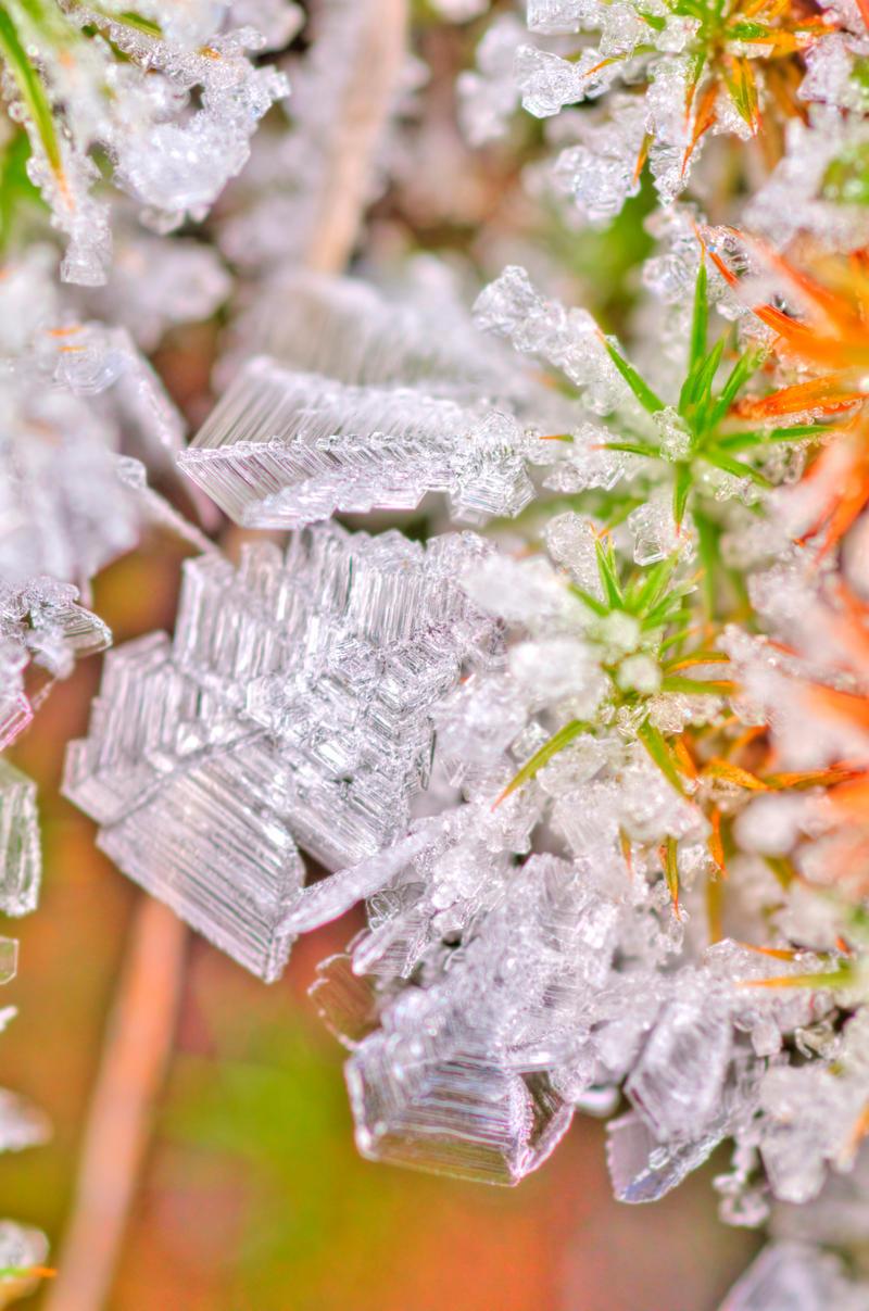 Frostflake