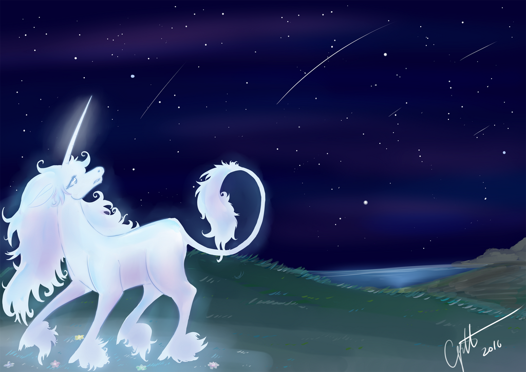 Lost in the night by elenawing