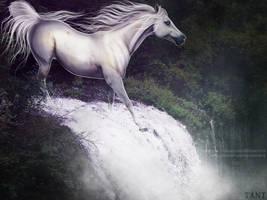 Chasing Waterfalls by tanttArt