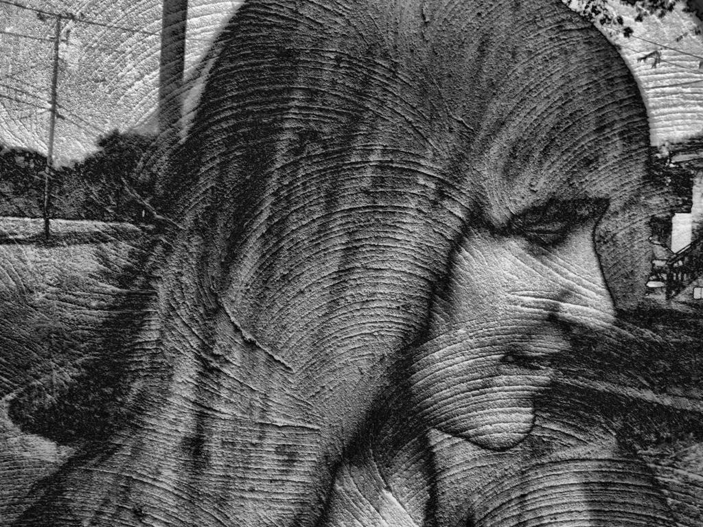 Stencil by smellslikegreen