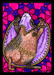 Bellydancing Guineapig ACEO 42
