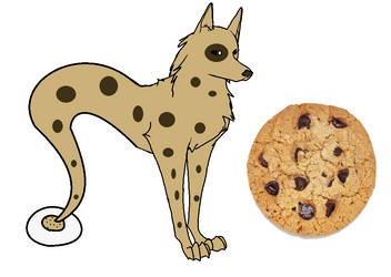 Chocolate Chip Cookie Themed DGD (open adoptable)
