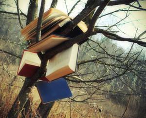 Reading Tree I by CaptainRedd