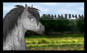 DimmTimm by Sidgi
