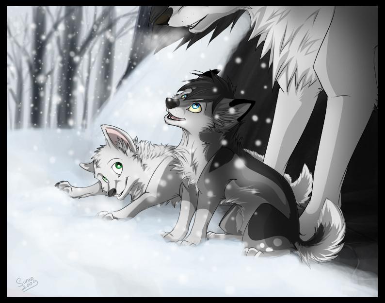 First Snow by Sidgi