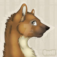 Commissiom ava: bySuane2Quoll