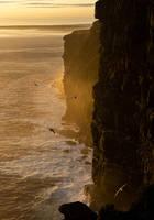 Fulmar  Coast