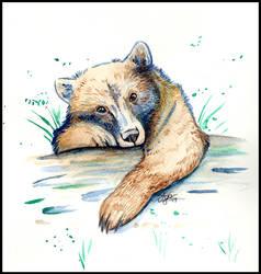 Bear Cub Watercolor by daanzi