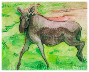 Mini Moose Watercolor by daanzi