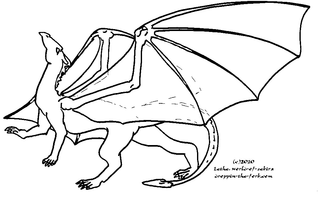 Stretching Dragon Template by lethe-gray on DeviantArt