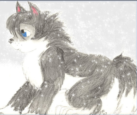 snow wolf pup by ezzygezzy