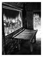 Anybody Home? by quadrajet988