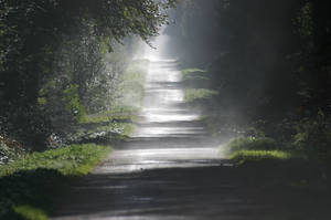 A way to walk on II... by schaafflo