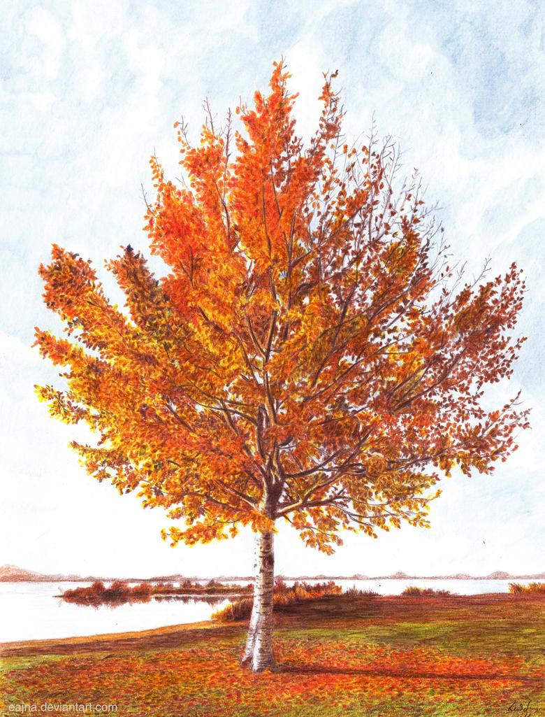 Autumn's Glow by eajna