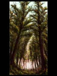 virgin forest by slizgi