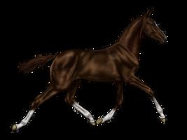 Needle as foal