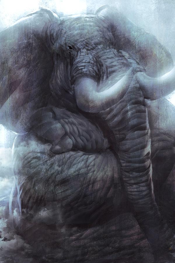 Say no to Rhino by LASAHIDO