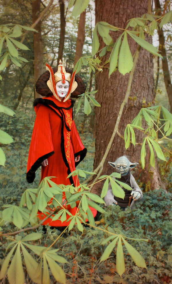 queen Amidala And Yoda by Riluna