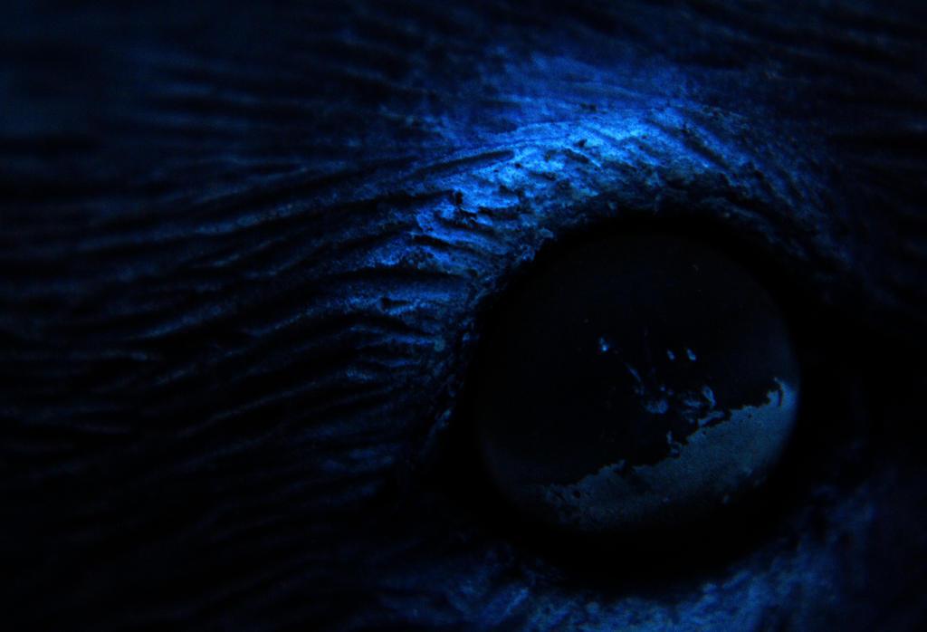 Dark Watcher by stackomac