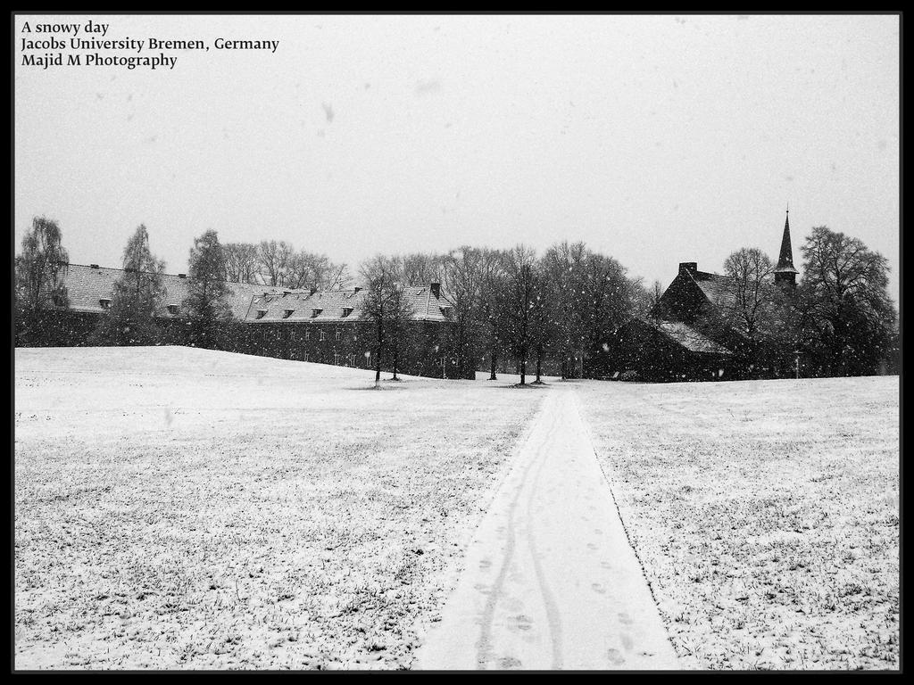 A snowy day by meanart