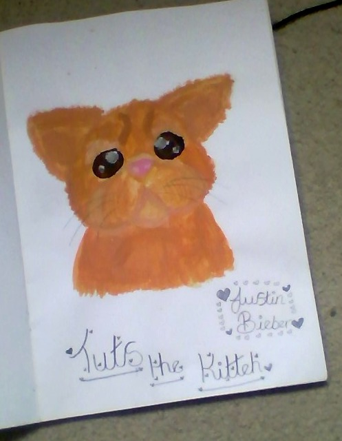 Tuts The Kitteh Painted by Bubblegumartt