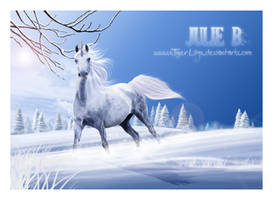 And Winter Came by JulieBales