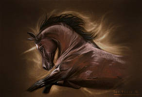 Unicorn's Soul by JulieBales