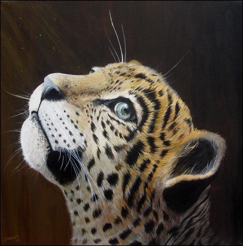 2010 Jaguar For Sale: Uturunku, The Jaguar Cub By JulieBales On DeviantArt