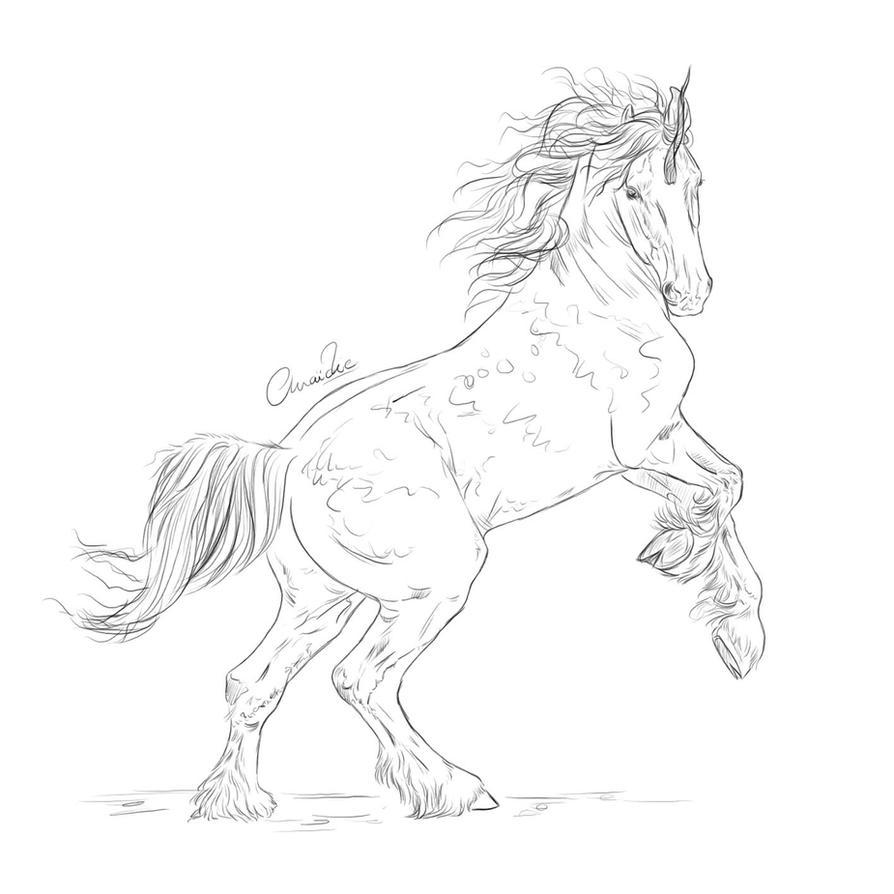 Line Art Unicorn : Unicorn lineart by juliebales on deviantart