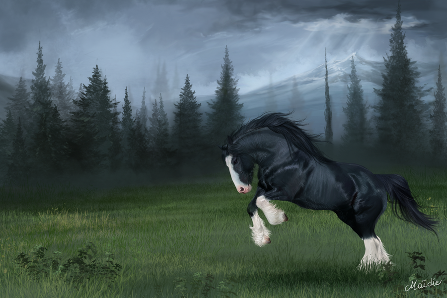 Angus (Brave) by JulieBales