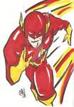 The Flash Cartoon Style